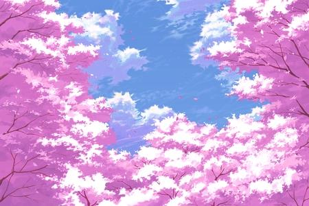 Sakura Fall